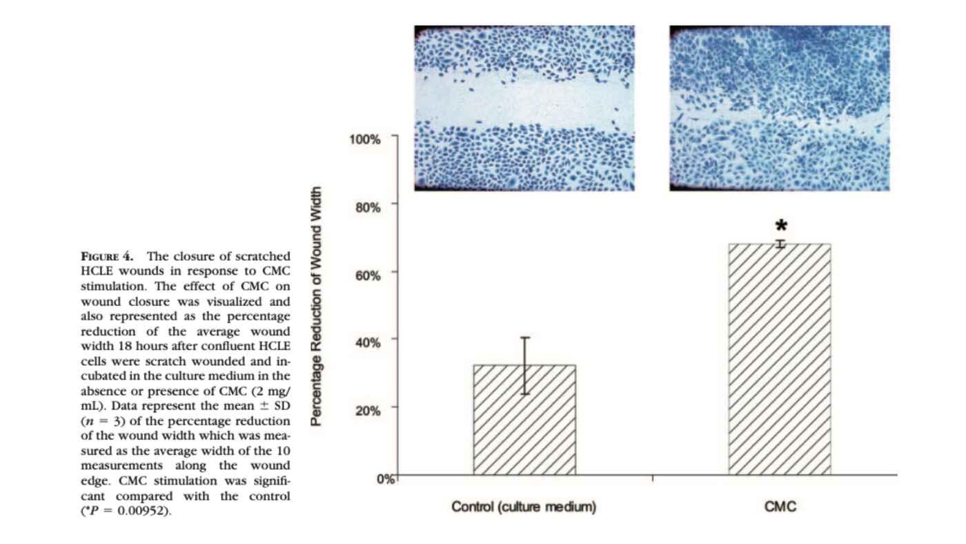 La Carboximetilcelulosa se une a las células epiteliales de la córnea humana y es un modulador de la curación de las heridas del epitelio corneal